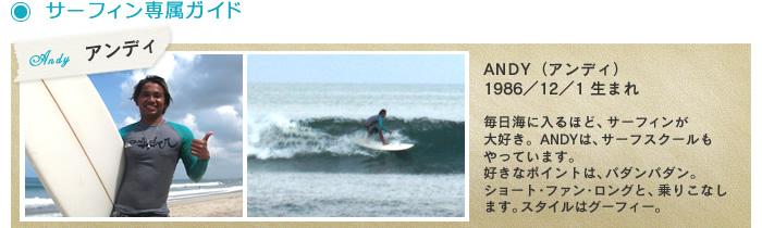 サーフィン専属ガイド